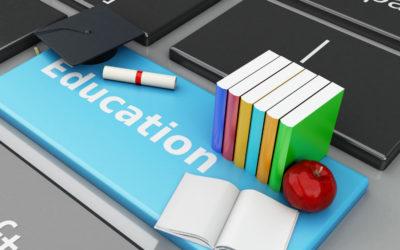 Hvad ved Piaget om online læring?